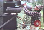 Image of Birch tree Canoe United States USA, 1975, second 56 stock footage video 65675022754