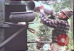Image of Birch tree Canoe United States USA, 1975, second 57 stock footage video 65675022754
