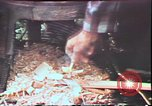 Image of Birch tree Canoe United States USA, 1975, second 59 stock footage video 65675022754