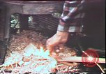 Image of Birch tree Canoe United States USA, 1975, second 60 stock footage video 65675022754