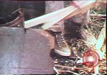 Image of Birch tree Canoe United States USA, 1975, second 61 stock footage video 65675022754