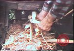 Image of Birch tree Canoe United States USA, 1975, second 62 stock footage video 65675022754