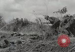 Image of U.S. Army 81st Infantry Division  Palau Islands, 1945, second 10 stock footage video 65675022854
