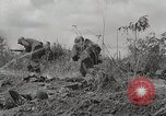 Image of U.S. Army 81st Infantry Division  Palau Islands, 1945, second 12 stock footage video 65675022854