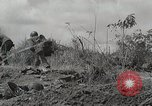 Image of U.S. Army 81st Infantry Division  Palau Islands, 1945, second 13 stock footage video 65675022854