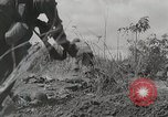 Image of U.S. Army 81st Infantry Division  Palau Islands, 1945, second 16 stock footage video 65675022854