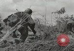 Image of U.S. Army 81st Infantry Division  Palau Islands, 1945, second 17 stock footage video 65675022854