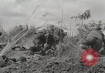 Image of U.S. Army 81st Infantry Division  Palau Islands, 1945, second 20 stock footage video 65675022854