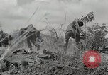 Image of U.S. Army 81st Infantry Division  Palau Islands, 1945, second 22 stock footage video 65675022854