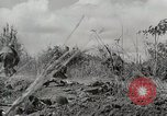 Image of U.S. Army 81st Infantry Division  Palau Islands, 1945, second 25 stock footage video 65675022854