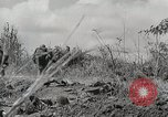 Image of U.S. Army 81st Infantry Division  Palau Islands, 1945, second 26 stock footage video 65675022854