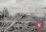 Image of U.S. Army 81st Infantry Division  Palau Islands, 1945, second 27 stock footage video 65675022854