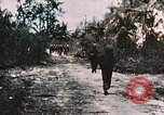 Image of 7th Marine Regiment Peleliu Palau Islands, 1944, second 19 stock footage video 65675022872