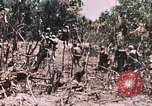 Image of 7th Marine Regiment Peleliu Palau Islands, 1944, second 21 stock footage video 65675022872