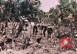 Image of 7th Marine Regiment Peleliu Palau Islands, 1944, second 23 stock footage video 65675022872