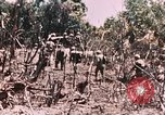 Image of 7th Marine Regiment Peleliu Palau Islands, 1944, second 24 stock footage video 65675022872