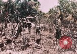 Image of 7th Marine Regiment Peleliu Palau Islands, 1944, second 25 stock footage video 65675022872