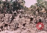 Image of 7th Marine Regiment Peleliu Palau Islands, 1944, second 26 stock footage video 65675022872