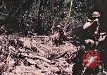 Image of 7th Marine Regiment Peleliu Palau Islands, 1944, second 39 stock footage video 65675022872