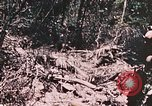 Image of 7th Marine Regiment Peleliu Palau Islands, 1944, second 42 stock footage video 65675022872