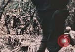 Image of 7th Marine Regiment Peleliu Palau Islands, 1944, second 49 stock footage video 65675022872