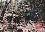 Image of 7th Marine Regiment Peleliu Palau Islands, 1944, second 53 stock footage video 65675022872