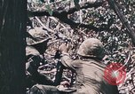 Image of 7th Marine Regiment Peleliu Palau Islands, 1944, second 57 stock footage video 65675022872