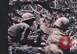 Image of 7th Marine Regiment Peleliu Palau Islands, 1944, second 60 stock footage video 65675022872