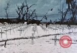 Image of U.S. Armed Forces Cemetery No. 1 Peleliu Palau Islands, 1944, second 38 stock footage video 65675022888