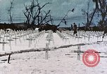 Image of U.S. Armed Forces Cemetery No. 1 Peleliu Palau Islands, 1944, second 45 stock footage video 65675022888