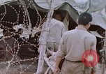Image of Japanese prisoners of war Peleliu Palau Islands, 1944, second 39 stock footage video 65675022892