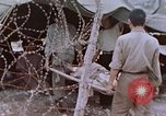 Image of Japanese prisoners of war Peleliu Palau Islands, 1944, second 41 stock footage video 65675022892