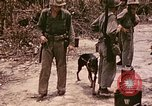 Image of First Division Marines Peleliu Palau Islands, 1944, second 2 stock footage video 65675022907