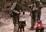 Image of First Division Marines Peleliu Palau Islands, 1944, second 4 stock footage video 65675022907