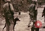 Image of First Division Marines Peleliu Palau Islands, 1944, second 6 stock footage video 65675022907