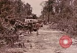 Image of First Division Marines Peleliu Palau Islands, 1944, second 17 stock footage video 65675022907