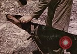 Image of First Division Marines Peleliu Palau Islands, 1944, second 28 stock footage video 65675022907