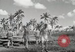 Image of C-47 Skytrain San Pablo Philippines, 1944, second 32 stock footage video 65675022922