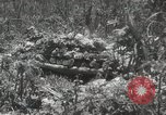 Image of 5th Marines Division Peleliu Palau Islands, 1944, second 31 stock footage video 65675022945