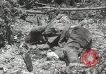 Image of 5th Marines Division Peleliu Palau Islands, 1944, second 34 stock footage video 65675022945