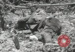 Image of 5th Marines Division Peleliu Palau Islands, 1944, second 35 stock footage video 65675022945