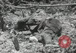 Image of 5th Marines Division Peleliu Palau Islands, 1944, second 36 stock footage video 65675022945