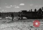 Image of 5th Marine Division Peleliu Palau Islands, 1944, second 43 stock footage video 65675022958