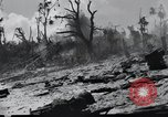 Image of 81st Army Division Peleliu Palau Islands, 1944, second 60 stock footage video 65675022966