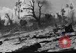 Image of 81st Army Division Peleliu Palau Islands, 1944, second 62 stock footage video 65675022966