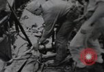 Image of 81st Army Division firing on sniper Peleliu Palau Islands, 1944, second 31 stock footage video 65675022967