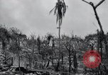 Image of 81st Army Division firing on sniper Peleliu Palau Islands, 1944, second 33 stock footage video 65675022967