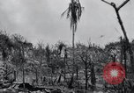 Image of 81st Army Division firing on sniper Peleliu Palau Islands, 1944, second 35 stock footage video 65675022967