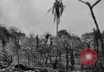 Image of 81st Army Division firing on sniper Peleliu Palau Islands, 1944, second 36 stock footage video 65675022967