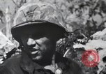 Image of 81st Army Division firing on sniper Peleliu Palau Islands, 1944, second 51 stock footage video 65675022967